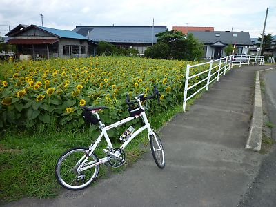 北上川東ルート(盛岡→平泉)byDahon・DASHx20