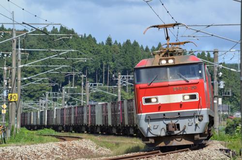 EF510牽引のコンテナ貨物(越後広田-北条/2014.9.14)
