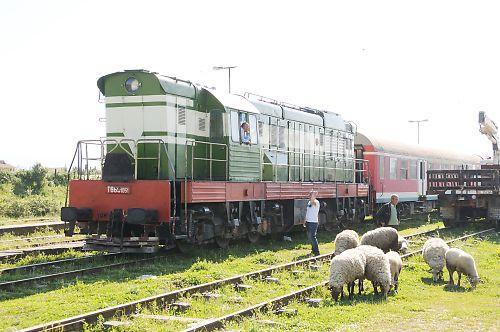 アルバニアの鉄道(Vore駅)