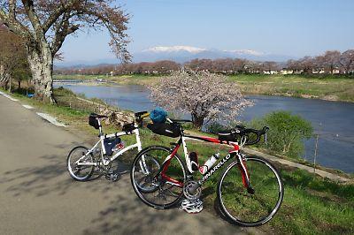 【自転車】南陽お花見ツーリング by 国道113号線