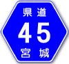 宮城県道45号