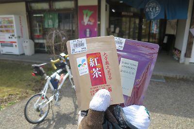 奥久慈茶の里公園・国産紅茶