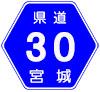 宮城県道30号