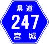 宮城県道247号