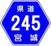 宮城県道245号