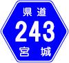 宮城県道243号
