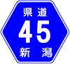 新潟・県道45号
